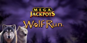 Wolf Run slot (IGT) - Review 140