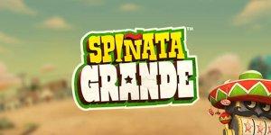 Spiñata Grande 65